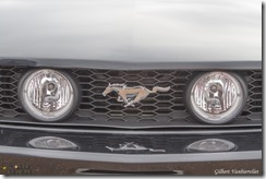 Expo Mustang Lille-IMG_4185-27042014 (Copier)