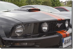 Expo Mustang Lille-IMG_4206-27042014 (Copier)