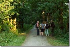 Marais de Bonance - 253A6758 - 21 juin 2017