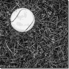 balle de tennis JA (Copier)