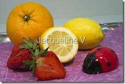 Agrumes Jacqueline 17