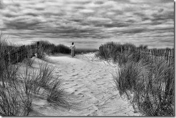 025 - A l'horizon - Daniel _CACHEUX