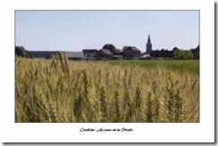 Carte postale Coutiche (Copier)