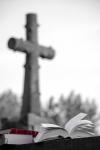023 L'ombre du vent Carlos Ruiz Zafon - FLINOIS Francis.jpg