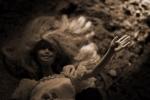052 Une mort esthétique P.D. James - NACOLIS Angeline.jpg