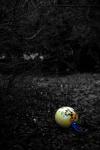 053 Souvenir d'une enfance décimée - ALEXANDRE Florine.jpg