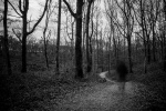 056 sylvester ghost - MOTHE Patrick.jpg