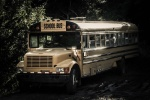 049 LOUCHET Fred - Le Bus abandonné.jpg