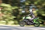 062 DUTRIAUX Yves - MOTO VERTE.jpg