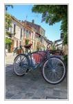 120 LECLERCQ Laurent - Vélo.jpg