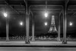 105 La liberté au pied de la tour Eiffel - MEIGNEUX Nicolas..jpg