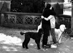 102 Etreinte à Central Park - RUCHET Cyril.jpg
