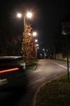 134 Irruption dans la nuit - LOBRY Pascal.jpg