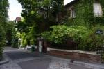 196 La verdure dans les rues de Paris - AUERSWALD Lucie.jpg