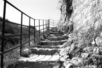 007 - Je monte les marches de l'histoire - VABRE Lilian.jpg