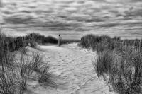 025 - A l'horizon - Daniel _CACHEUX.jpg