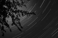 040 - Filé d'étoiles - LindaR-Nature.jpg