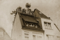 056 - Münster - MONTER Detlef.jpg